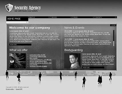 Security agency Website Design