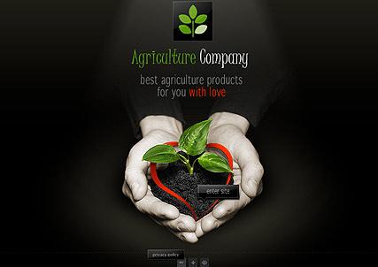 Agriculture Co. Website Design