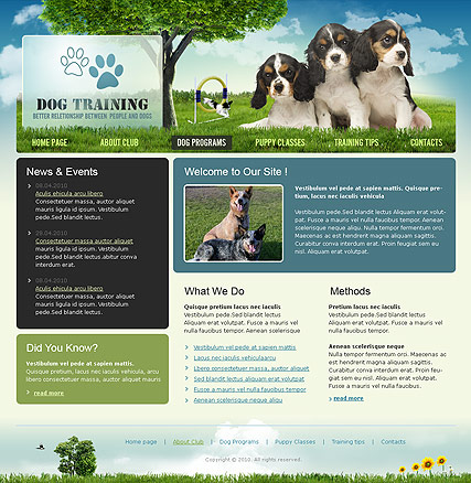 Dog Training Website Design
