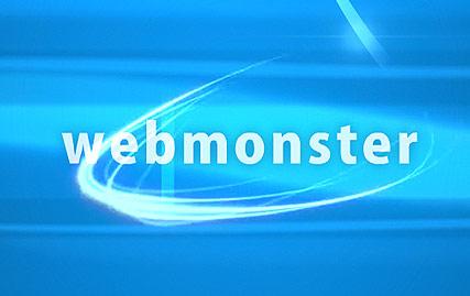 Web Monsters Website Design