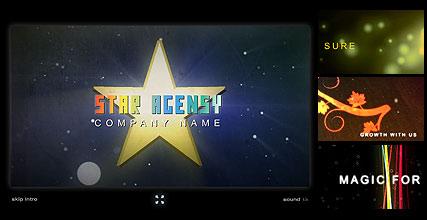 Star Agensy Website Design