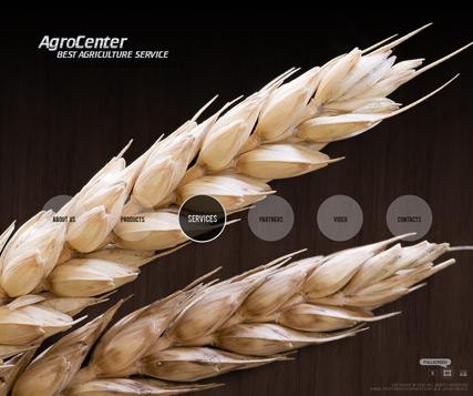 Agro Center Website Design
