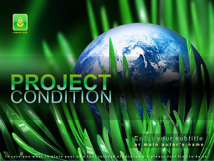 Project condition Website Design