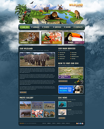 ZOO Website Design