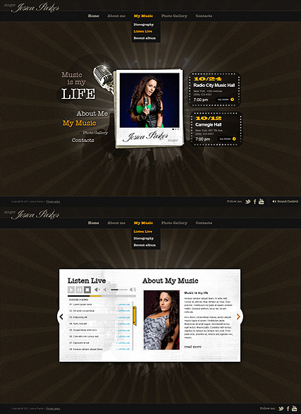 Singer Music Website Design