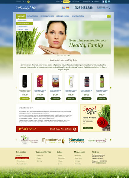 Healthy Life Website Design