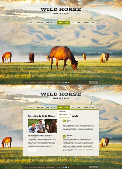 Horses Farm Website Design