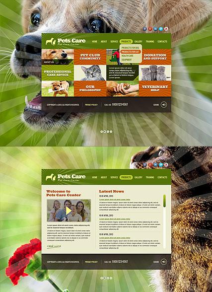 Pet Care Service Website Design
