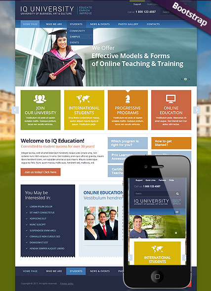 IQ University Website Design