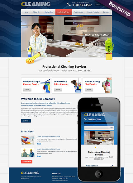 Cleanin Website Design