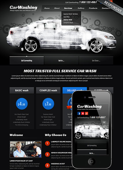 Car washing Website Design