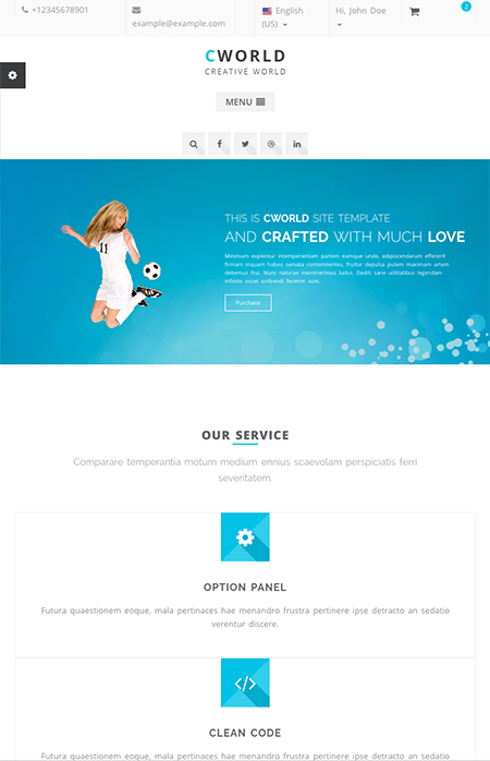 CWorld - Multi-Purpose Website Design