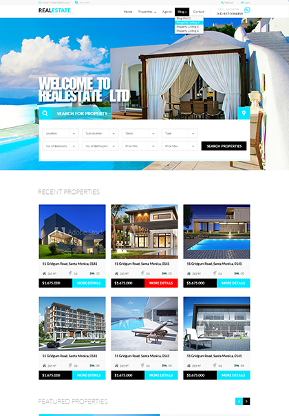 RealEstate Website Design
